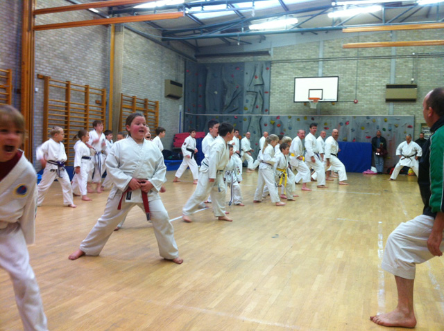 Traditional Karate